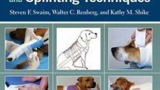 Küçük Hayvanlarda Bandajlama, Döküm ve Splinting Teknikleri