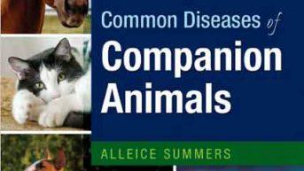 Companion Hayvanların Ortak Hastalıkları